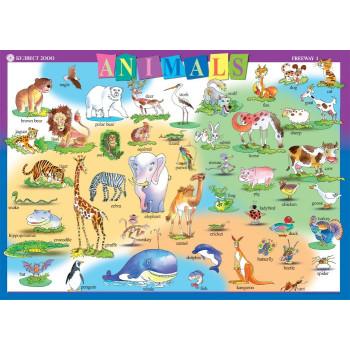 Freeway: Табло по английски език №3 за 2. клас - Animals
