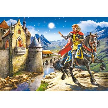 Knight and Princess