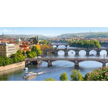 Vltava Bridges in Prague