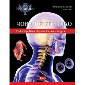 Човешкото тяло - том 4